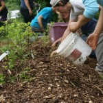 Registration is now open for 3rd Annual Permaculture F.E.A.S.T.!
